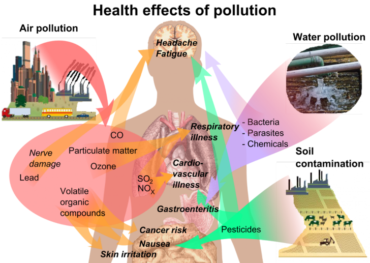 health effects of air pollution on humans, effects of air pollution